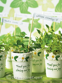 natural plants used as wedding favors