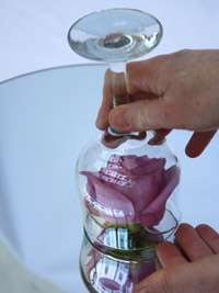 a purple rose being placed under a wine glass for a centerpiece