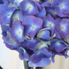 hydrangea wedding flowers used in a do it yourself centerpiece