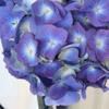 hydrangea wedding flowers used in a do it yourself centerpiece