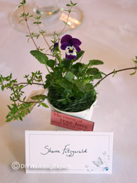 pansy plants use as a wedding favor