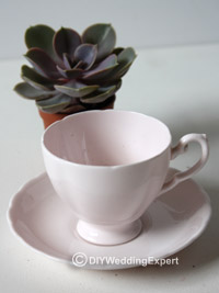 plant, cup and saucer to make a vintage wedding favor